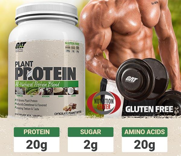 Plant Protein integratore di proteine in polvere da fonti vegetali, senza glutine e dolcificata con stevia